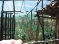 Kenya-jan-2012-025[1]_fs